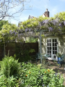 Garden with patio and wisteria